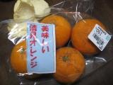 Kiyomimizutani100403