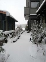 Snowday110116