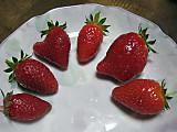 Strawberrynatsuhime6