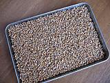 Wheatgrain