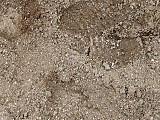 Sandzoom