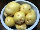 Patatocrop