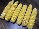 Corn3rd2