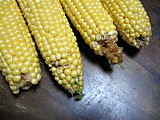 Corn3rd2bugdamage