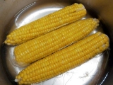Corn11boild